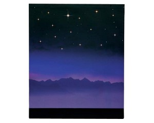 Lemax Village Collection Starry Night Background Battery Operated  # 64078
